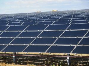 (First Solar) Topaz Solar Farm Capacity: 550 MW Developer: First Solar Location: Carrisa Plains, CA